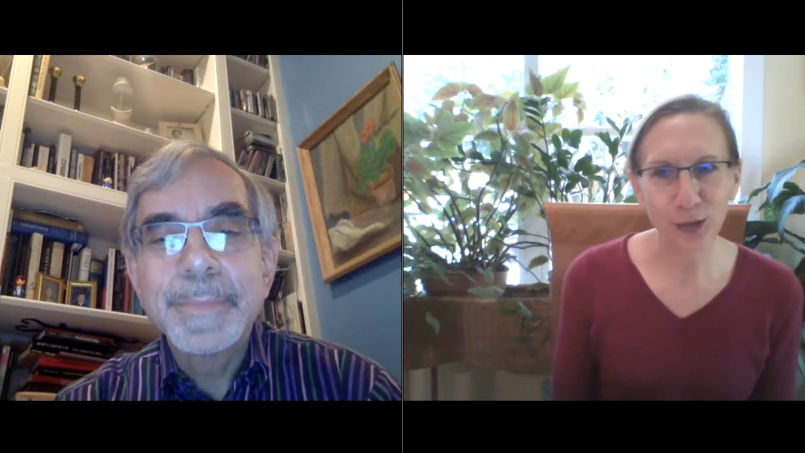 Professors Anthony Arend and Elizabeth Stanley in a webinar